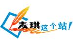 企业网站建设及推广优化服务公司